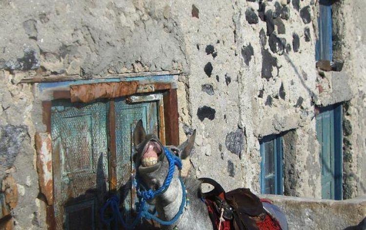 ...sorridiamo candidamente (Santorini, Grecia, 2007)